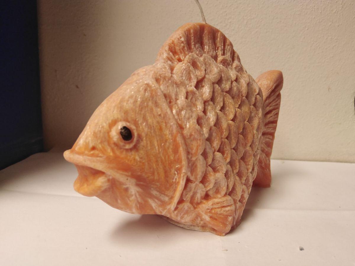 Svíčka - ryba velká